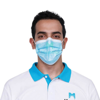 Ce En14683 Type 2r Anti Droplets Virus Bacterial 3 Ply Non-Woven Medical Procedure Pleated Earloop Disposable Surgical Face Mask